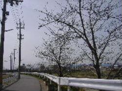 2011.4-4.jpg