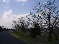 2011.4-7.jpg