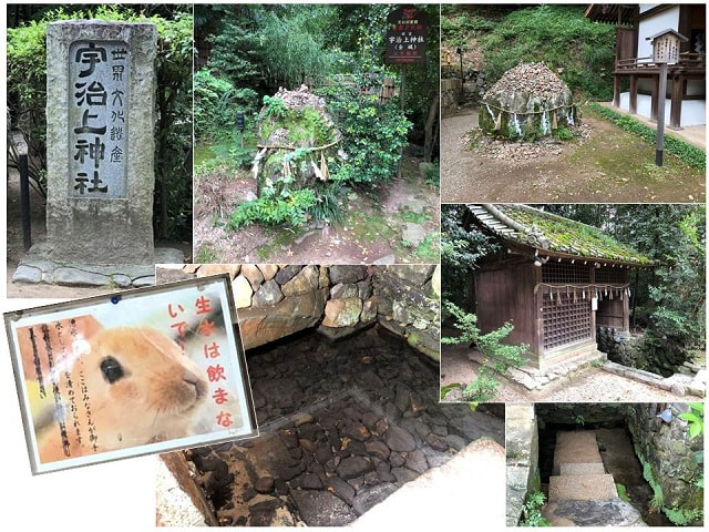 daikichi001.jpg
