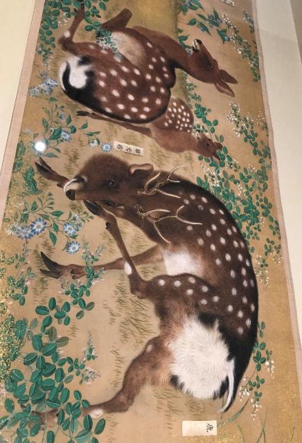 kyoto-11-6.jpg