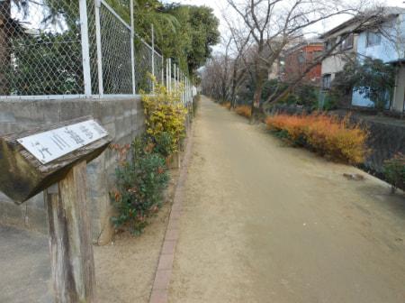 new_2012-1-1.jpg