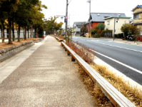 new_2012-2-10.jpg