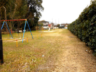new_2012-2-2.jpg