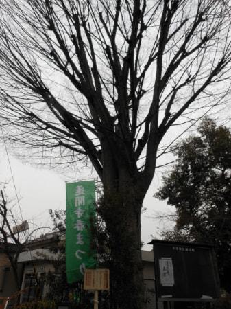 new_2012-3-1.jpg