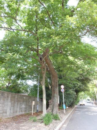 new_2012-7-2.jpg